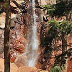Tree Framed Falls by Ken Lowden