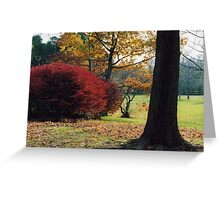 Autumn Arrives Greeting Card