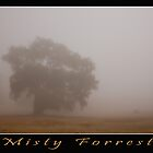 Misty Forrest by Robert-Irvine