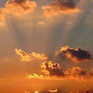 Heaven's Light by Sara Johnson