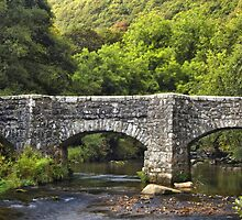 Fingle bridge, Drewsteignton, Devon by Squealia