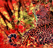 THE LEOPARD - A COLLABORATION by Magaret Meintjes