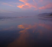 Oregon Coast Sunset by Allan  Erickson