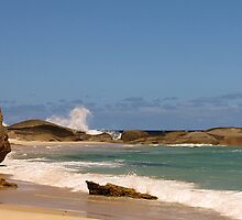 Lowlands - a fabulous Southern Ocean beach with a hopeful fisherman by georgieboy98