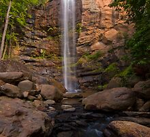 Toccoa Falls by Phillip  Simmons
