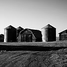 Barns B&W by Mindy McGregor