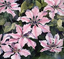 Nellie Moser Clematis by artbyrachel