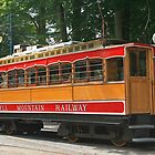 SMR Tram at Laxey by RedHillDigital