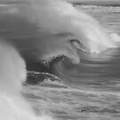 Waves in Black & White by Samantha  Goode