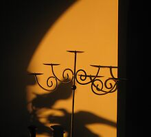Shadowy Afternoon Golds by GemmaWiseman