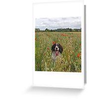 Poppy Lover Greeting Card