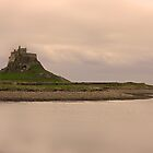 Lindisfarne Castle #2 by chris2766