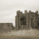 Lindisfarne Priory by chris2766