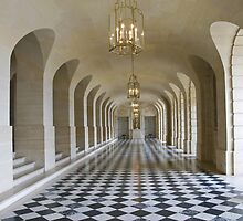 Lower Gallery - Versailles Palace by Sheila Laurens