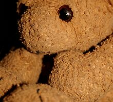 The bear without a nose by Roxy J