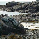 Rocky Shore by karenlynda