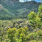 Grampian Magic - Grampians National Park - The HDR Experience by Philip Johnson