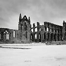 Whitby Abbey by Mark Jones