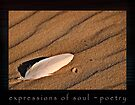 Expressions of Soul - Poetry by Wendy  Slee