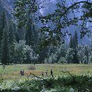 Yosemite by Priscilla Rodriguez