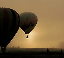 Misty Dawn Flight by Jeannette Sheehy