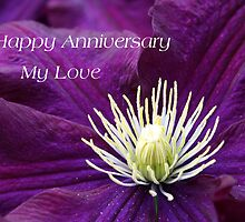 Happy Anniversary My Love by kkphoto1