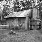 Cascade Hut NSW by Bindi Hatcher