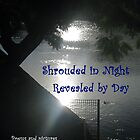 Shrouded in Night, Revealed by Day by aaeiinnn