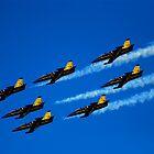 BREITLING JET TEAM 7X AERO L-39 ALBATROS ( FRANCE ) by RayFarrugia