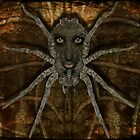 Spider Queen by synister1