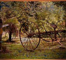 ANTIQUE HORSE DRAWN HAY RAKE by Jael