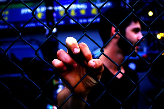 Don't Fence Me In {Colour} by Eranthos Beretta