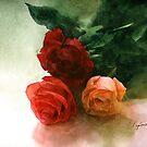 Roses by Sergei Kurbatov