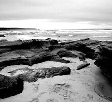 St Andrew's Beach by Joanna Beilby
