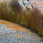 Grass in Granite by Werner Padarin