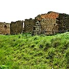 Cob & Co Stable Ruins 1 by judygal