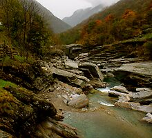 River in the Valley by dbrown