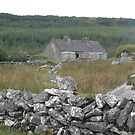 The Old Homestead--Slieve Elva-Co,Clare[Please View Larger] by Pat Duggan