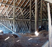 Looking Into the Old Barn by angelandspot