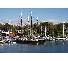 Camden Harbor Schooners Photographic Print