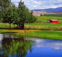 Nevada Farmlands by pat gamwell