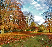 Autumn in Kent (UK) by Adri  Padmos