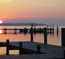 Sunrising on the docks by Timothy Gass