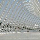 Calatrava's magic. by Anna Goodchild