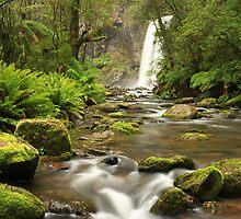 Hopetoun Falls - Otway ranges by Tony Middleton