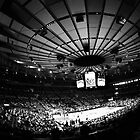 Madison Square Garden by Darren Findlow