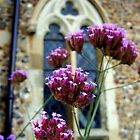 Churchyard flowers by Ali-in-Cambs