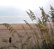 Another Sand Dune by Carol Knepp