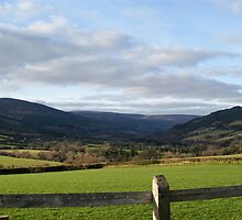 Irish Countryside by Kristiane Anderson