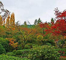 Butchart Gardens 36 by James Birkbeck